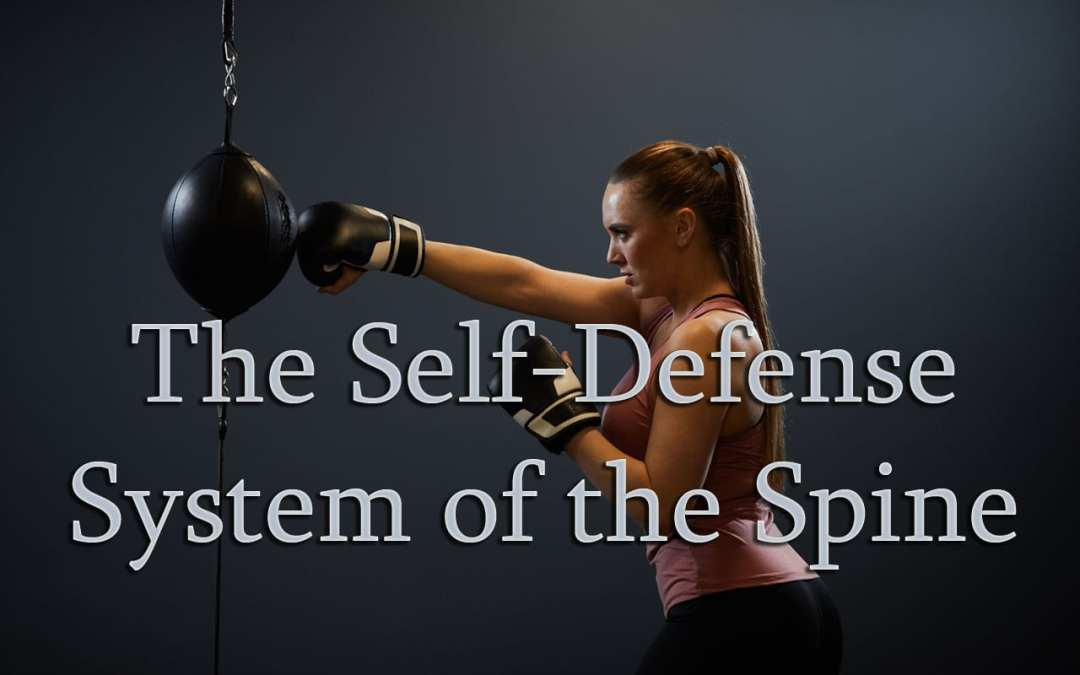 Self-Defense System of The Spine