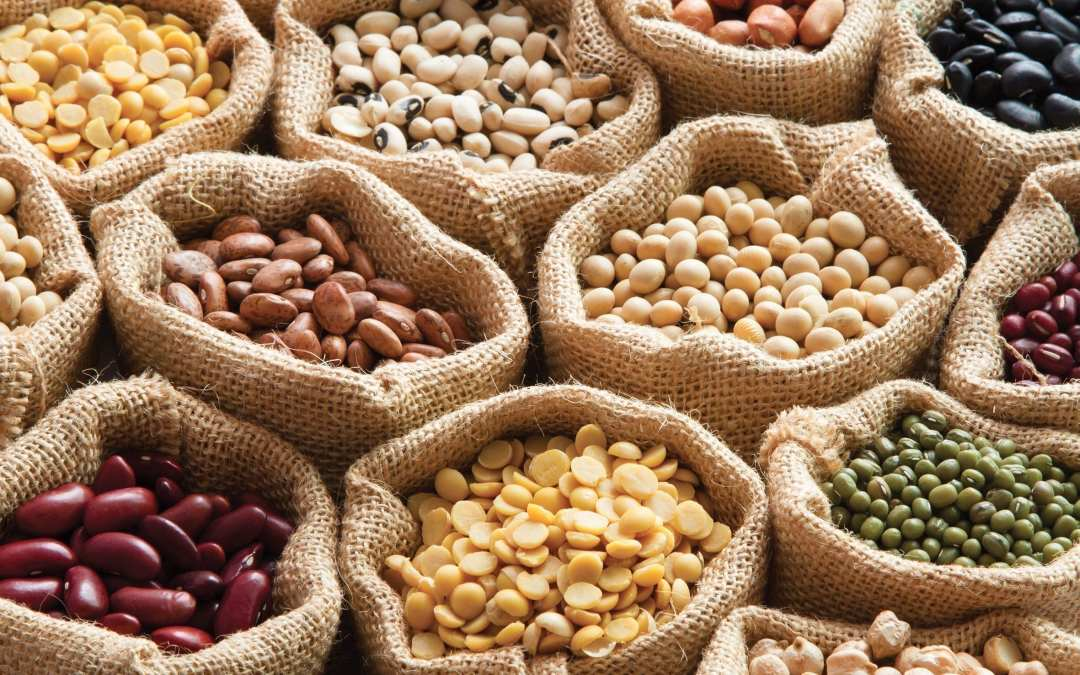 Safe to Eat Lectins & Harmful Lectins to Avoid