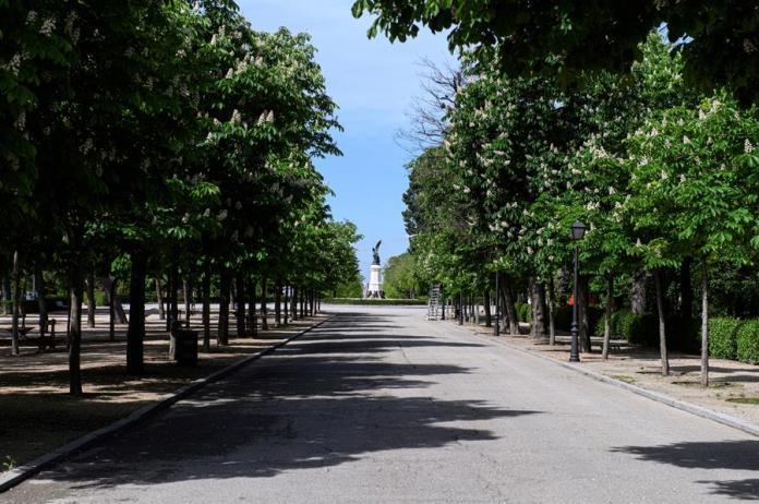 Vista del parque del Retiro de Madrid. EFE/Fernando Villar/Archivo