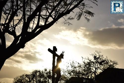 Las procesiones del Sábado de Pasión desde el objetivo de Lucas Álvarez
