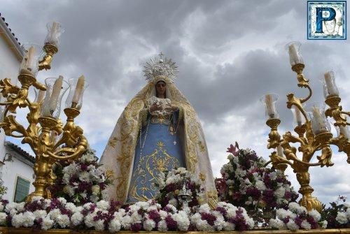 Hoy en directo: «Soñando un Domingo de Resurrección»