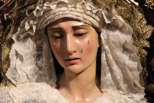 GALERÍA: Veneración a Santa María de la Paz y Concordia