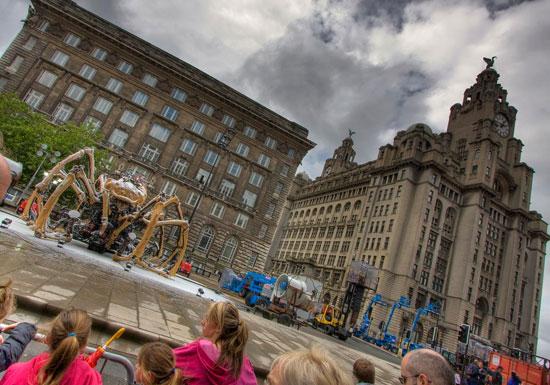 Liverpool y la araña