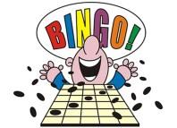 Bingo-Casinos online