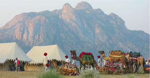 Ecoturismo en India