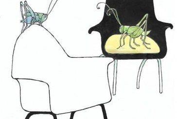 OMAR: Grillos al acecho