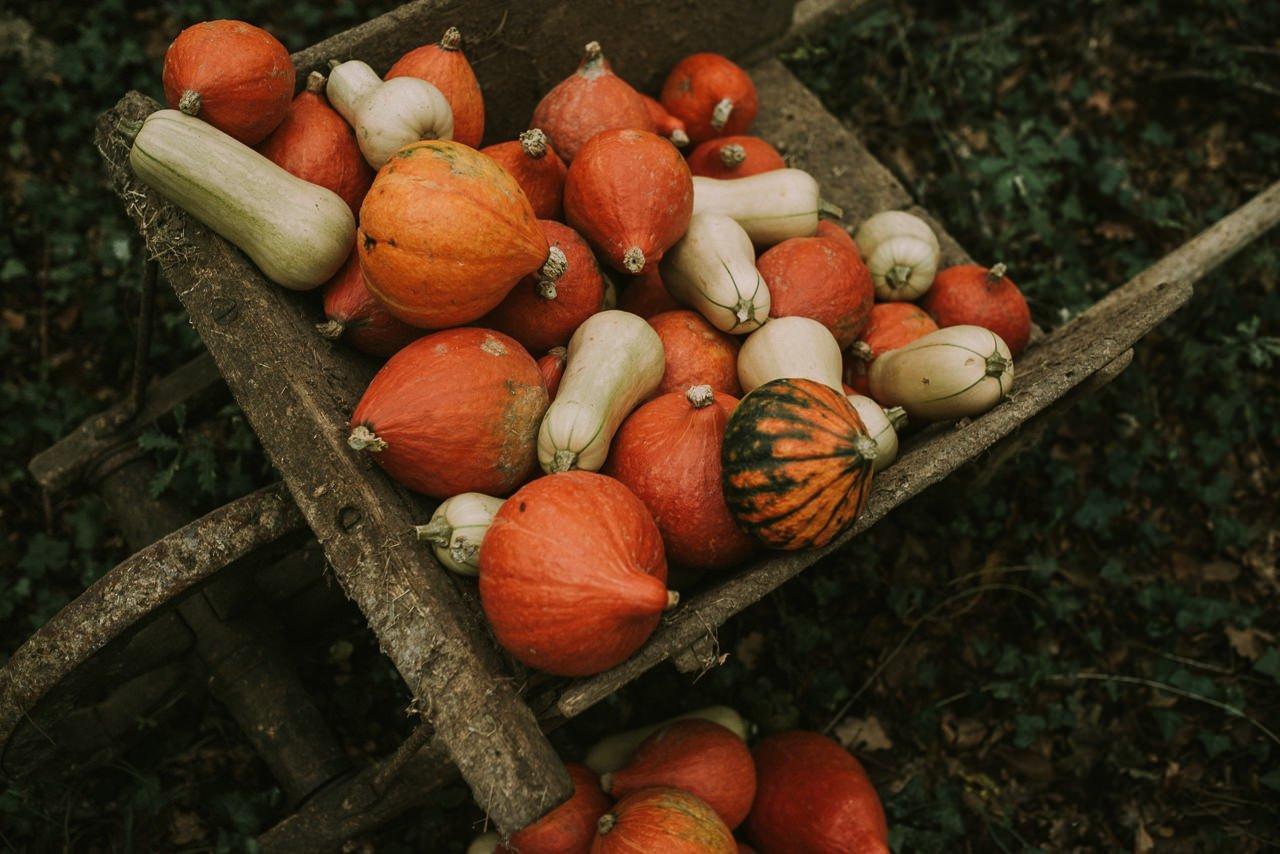 Decoración para bodas rústicas con calabazas y hortalizas