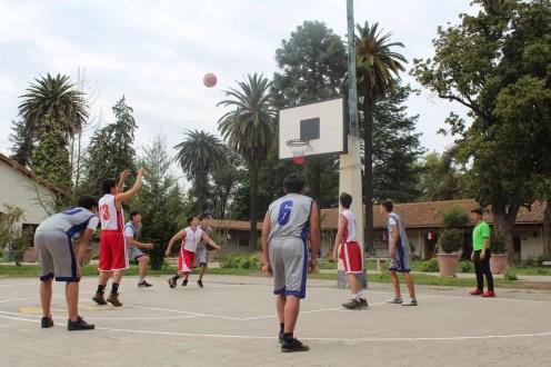 5 basquetbol