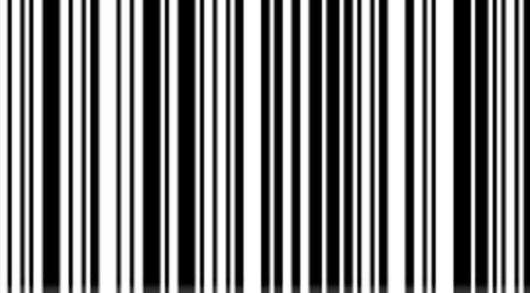 ¿Por qué la imagen del codigo de barras tiene que ser vectorial?