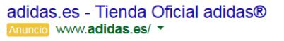 adidas en google