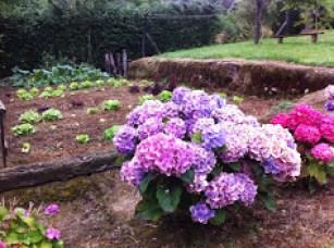 Acceso al huerto desde el jardín