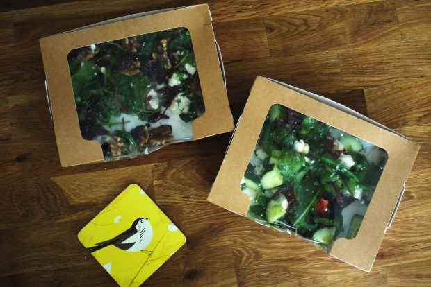 Salad boxes from Foundation Coffee House