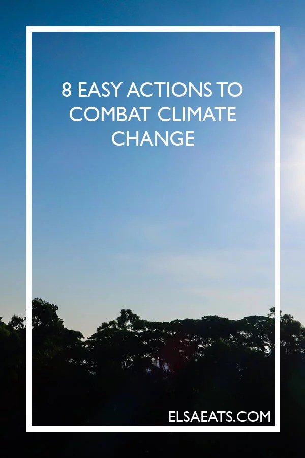 8 Easy Actions to Combat Climate Change