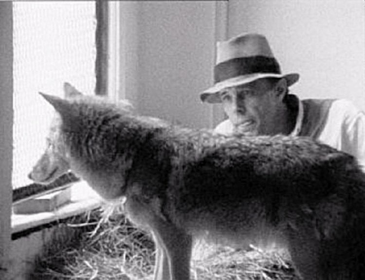 beuys-and-coyote