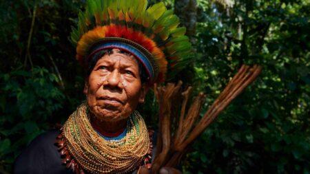Indígenas somos todos