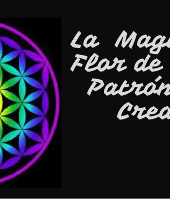 Flor de la Vida Hexagono