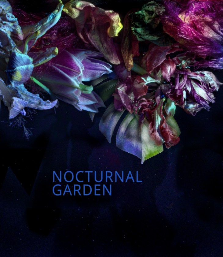 Nocturnal Garden