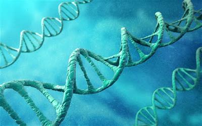 British Scientists Granted Permission To Genetically Modify Human Embyros