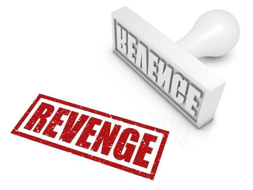The Stolen Revenge - elsieisy blog