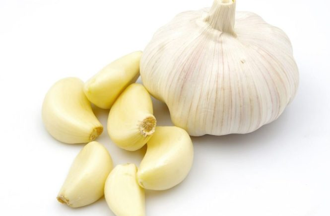 garlic - elsieisy blog - health benefits of garlic