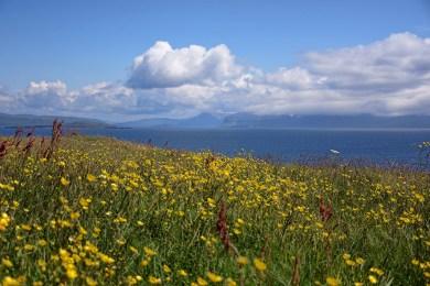 Uitzicht Staffa Schotland