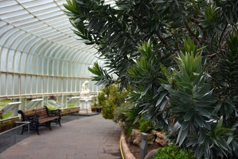 Botanische tuinen Glasgow kassen