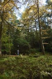 Met de drone vliegen in het bos bij Lemele
