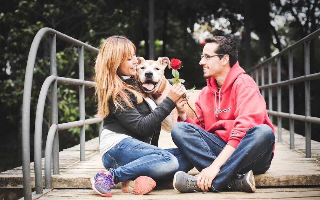 Fotógrafo de mascotas «Caipi, un senior muy especial»