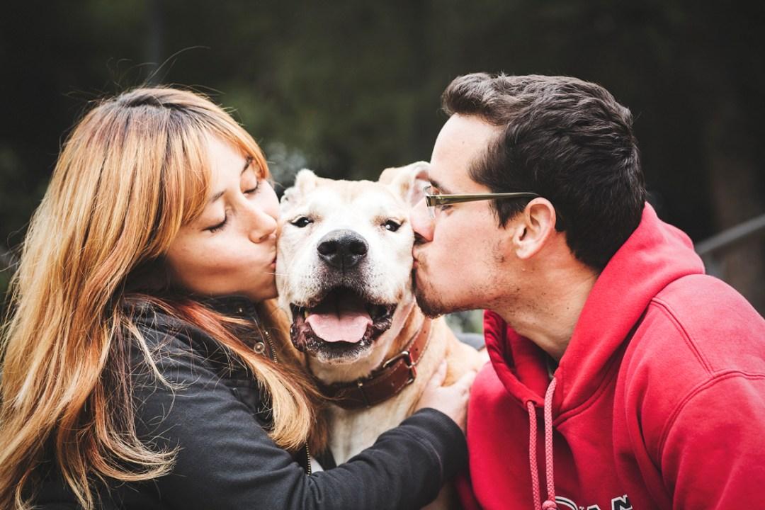 reportaje de perro PPP American Stanford y su familia le besa