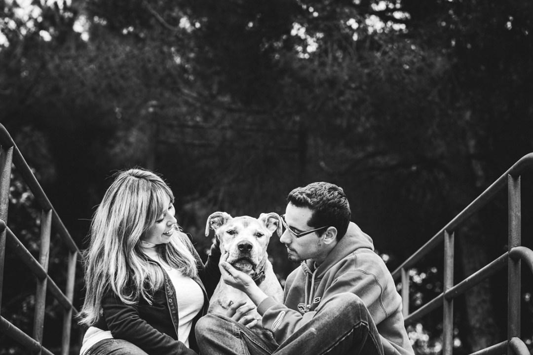 fotografo de mascotas pareja con su American standford