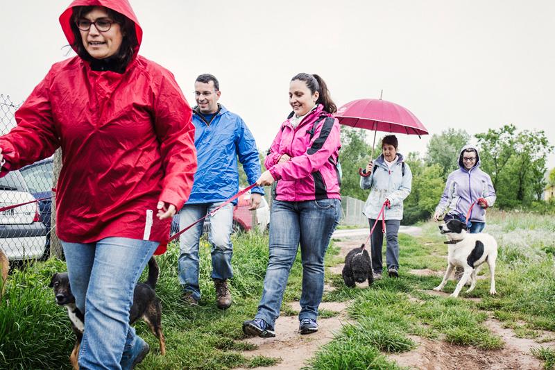 019_caminada popular solidaria _fotografo mascotas_adoptanocompres