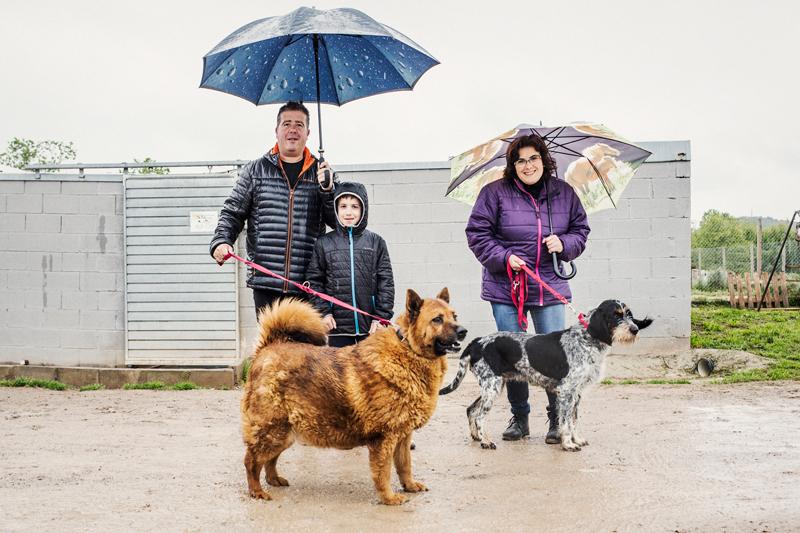 048_caminada popular solidaria _fotografo mascotas_adoptanocompres