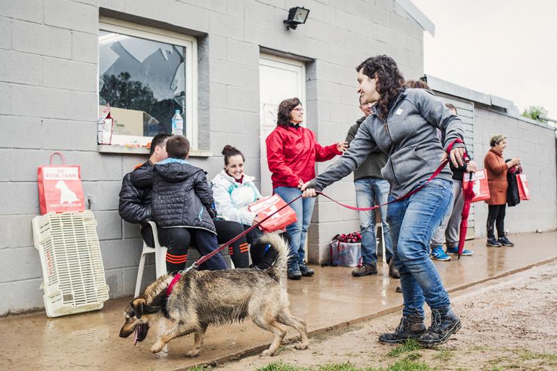 074_caminada popular solidaria _fotografo mascotas_adoptanocompres