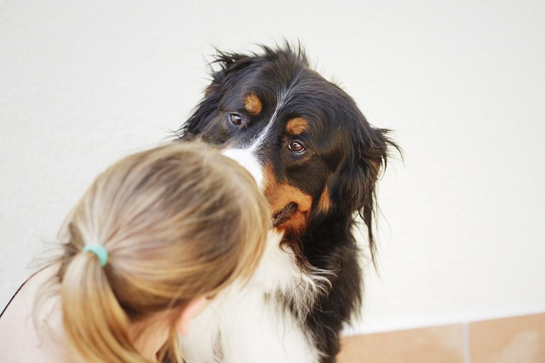 fotografo de mascotas 033-elsmagnifics-MuffinIzoku