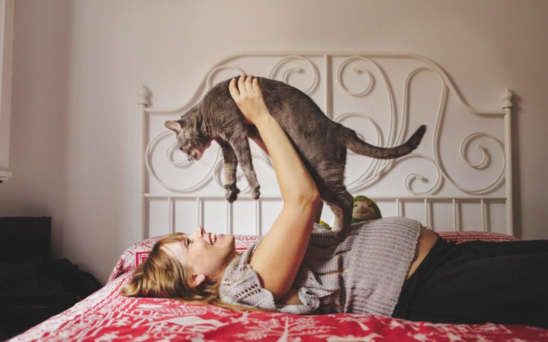 Fotógrafo de mascotas Sesión Embarazo en una bella casita