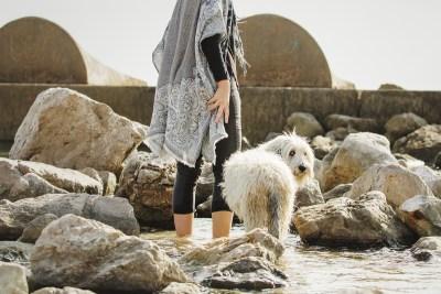 fotografo-de-mascotas-038-els-magnifics_perro-williemaggie