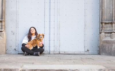 Fotógrafo de mascotas: Puro amor perruno de Manchester a Barcelona