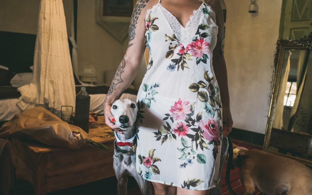 Fotógrafo de mascotas: Boda muy perruna
