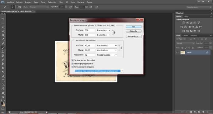 9-transfers-ampliar-pixeles-de-una-imagen