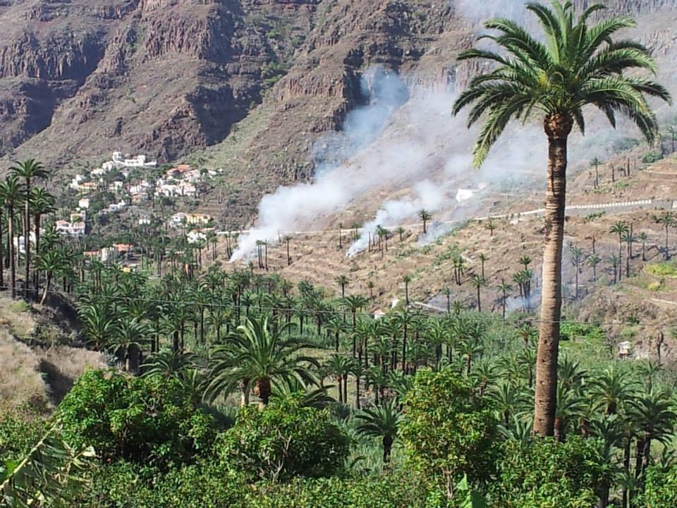 Quemas de rastrojos en Valle Gran Rey