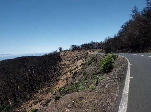 Vista parcial del resultado del incendio
