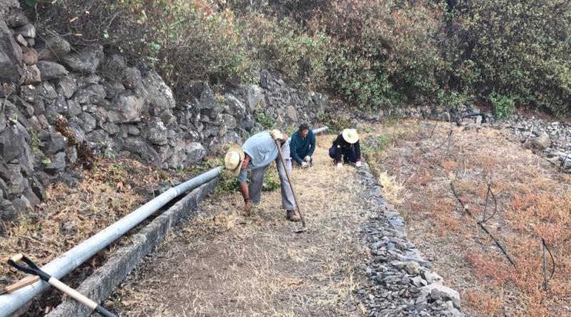 Agulo elaborará su primera guía de senderos municipal