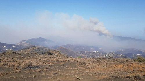El incendio de Gran Canaria comienza a remitir tras quemar más de 10.000 hectáreas