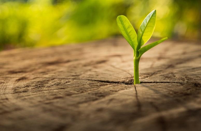 Powering a greener future