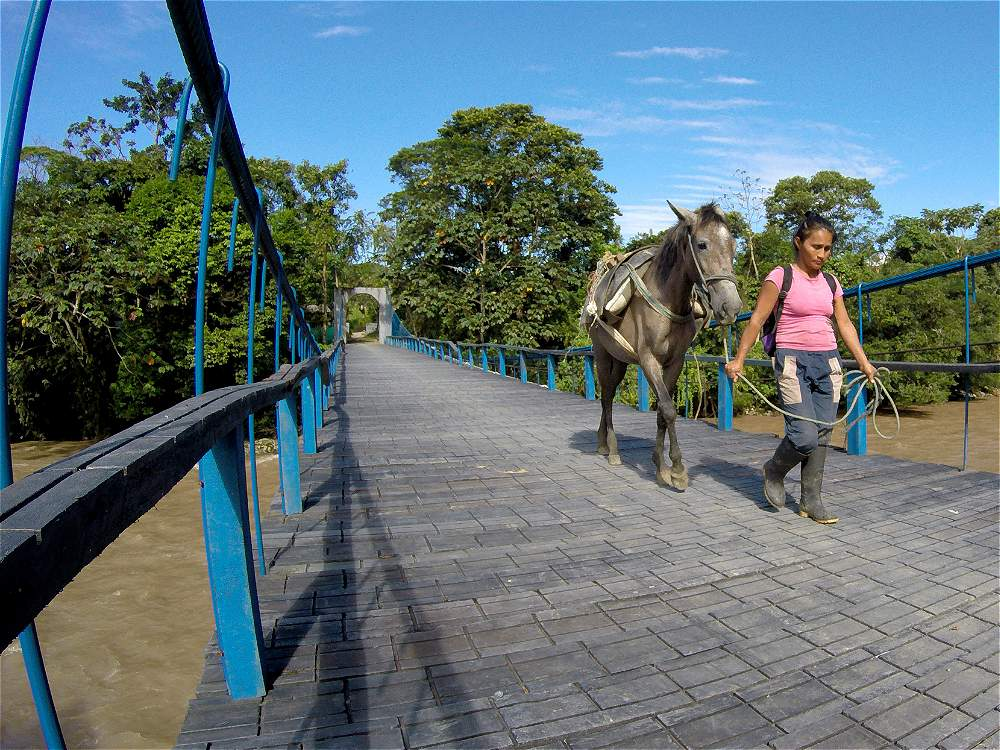 Puentes colgantes sobre los ríos abren paso a los pobladores de la zona para realizar sus labores del campo.