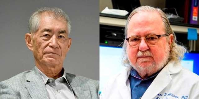 Los padres de la inmunoterapia y sus grandes descubrimientos: Nobel de Medicina 2018