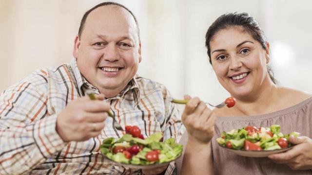 dieta 360 apoyo integral de pérdida de peso