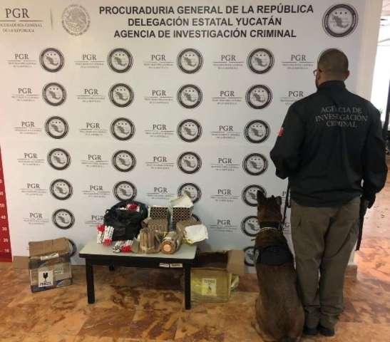 Se asegura material pirotécnico en paquetería de Mérida