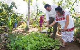 Huertos y créditos generan progreso en Yucatán