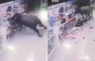 Búfalo ataca a mujer embarazada en un supermercado en China